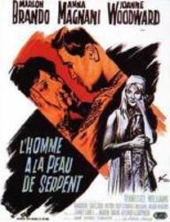 Brando_affiche_2